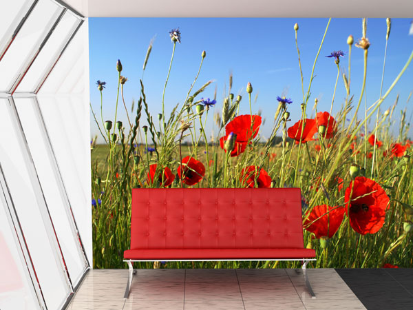 blumen fototapete blumen bl ten blume fototapeten bei. Black Bedroom Furniture Sets. Home Design Ideas